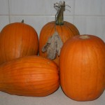 Pumpkins were the success story of 2013