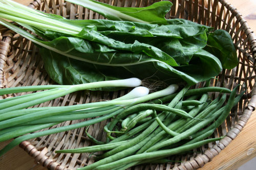 July - chard, spring onions & beans