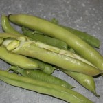 May - broad beans & peas